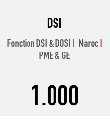 Panel DSI